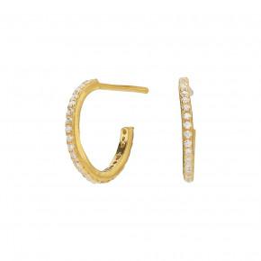 hoops with zirkonia gold