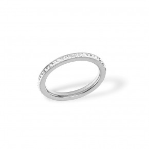Plain Zirkonia Ring Steel