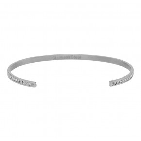 Zirkonia Bangle Mat Steel